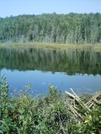 Sucker Pond