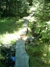 Boardwalk 2 by camojack in Trail and Blazes in Massachusetts