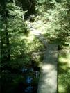 Boardwalk 3 by camojack in Trail and Blazes in Massachusetts
