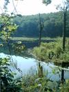 Scrub Hill Beaver Pond 10 by camojack in Trail & Blazes in Vermont