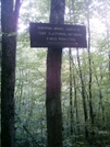 Sherman Brook Campsite Sign by camojack in Trail and Blazes in Massachusetts
