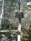Sign Between Mt. Williams And Mt. Greylock by camojack in Trail and Blazes in Massachusetts