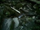 Limestone Shelter Water Source