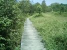 Ma Boardwalk