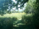 Ma Field by camojack in Trail and Blazes in Massachusetts