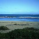 Niihau 2011 beach