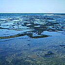 Niihau 2011 tidal pool 2 by camojack in Special Points of Interest