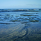 Niihau 2011 tidal pool by camojack in Special Points of Interest