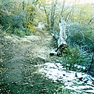 November 2011 S. CA 11 by camojack in Pacific Crest Trail