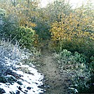 November 2011 S. CA 9 by camojack in Pacific Crest Trail