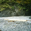 Spruce Island Alaska - hike to Ouzinkie, driftwood 2 by camojack in Special Points of Interest