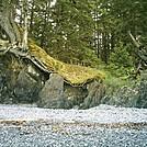 Spruce Island Alaska - hike to Ouzinkie, pebbly beach 3 by camojack in Special Points of Interest