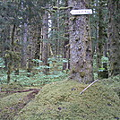 Spruce Island, Alaska - Pestrikoff Beach sign by camojack in Special Points of Interest