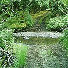 Spruce Island, Alaska - stream crossing on trail back from  Mt. Herman 4 by camojack in Special Points of Interest