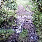 Spruce Island, Alaska - stream crossing on trail back from  Mt. Herman 5 by camojack in Special Points of Interest