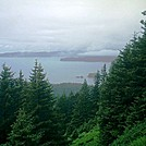 Spruce Island, Alaska - trail back from Mt. Herman 3 by camojack in Special Points of Interest