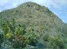 St. Bart's Hike - Hill