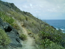 St. Bart's Hike - Path 6 by camojack in Special Points of Interest