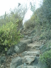 St. Bart's Hike - Path by camojack in Special Points of Interest