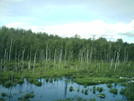 Alaska 2008 - Wet Vista 2 by camojack in Special Points of Interest