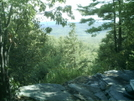 View Near Tom Leonard Shelter by camojack in Trail and Blazes in Massachusetts