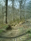 Wissahickon Clean-up by camojack in Maintenence Workers
