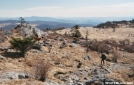Grayson Highlands State Park by gonzo in Views in Virginia & West Virginia