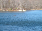 Nuclear Lake by elray in Special Points of Interest