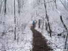 Springtime Snow Wayah Bald N.C. by tbone in Trail picture (contest)