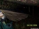 Hsmmock profile by jazilla in Hammock camping