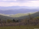 View from Wilburn Ridge by auroram in Section Hikers