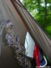Scout's Clothes Line by Michele in Hammock camping