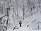 Feb snow in GA, N of Hogpen Gap by Yonah Ada-Hi in Section Hikers