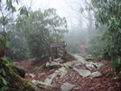 Hot Springs To Spivey Gap Dec 2008 by Yonah Ada-Hi in Trail & Blazes in North Carolina & Tennessee
