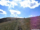 pictures of a spring hike by ajmack in Trail picture (contest)