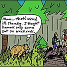 Bear by attroll in Boots McFarland cartoons