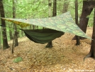 Hammocking in southern VT   :-)