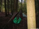 Pichot Trail Camp 3 by DGrav in Hammock camping