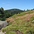 Roan Mountain 7/28/12 by mountain squid in Trail & Blazes in North Carolina & Tennessee