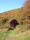 Fall Foliage '08 by mountain squid in North Carolina & Tennessee Shelters