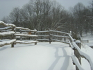 Winter in TN '09