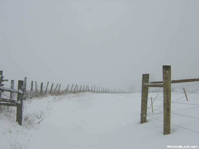 Winter in TN '09