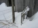 Winter in TN '10