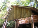 Curley Maple Gap Shelter, TN 10/8/10 by mountain squid in North Carolina & Tennessee Shelters