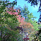 Laurel Fork Gorge, TN, 10/9/11 by mountain squid in Views in North Carolina & Tennessee