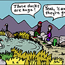 Duck Geese by attroll in Boots McFarland cartoons