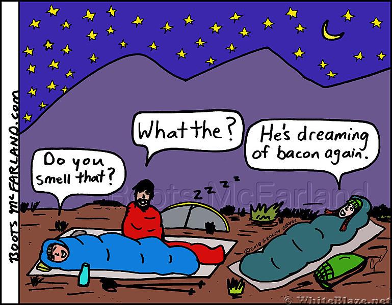 Bacon dream
