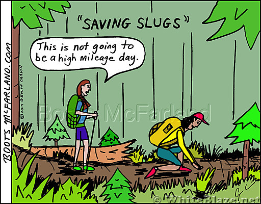 Saving slugs