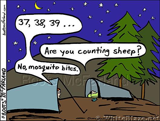 Sheep bites