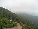 Trail East Of Mt. Eisenhower